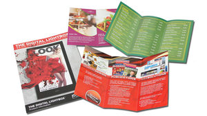 DDL fold to DL: 150gsm (4pp DL Brochure)